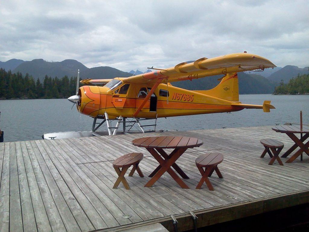 plane in lake